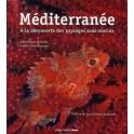 Méditerranée, à la découverte des paysages sous-marins